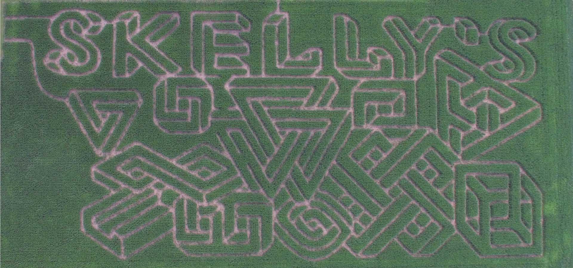 Maze Master Games